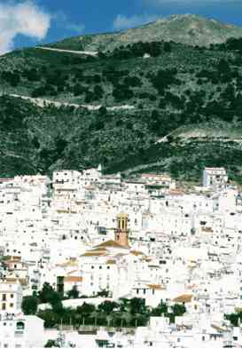 Traditional whitewashed andalucian village of Competa